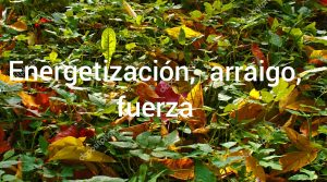 Foto de Nuria Arraigo